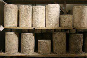 Chesapeake Cheddar Cheese