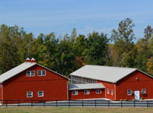 State-of-the-art cheese production facility, milking parlor and country store